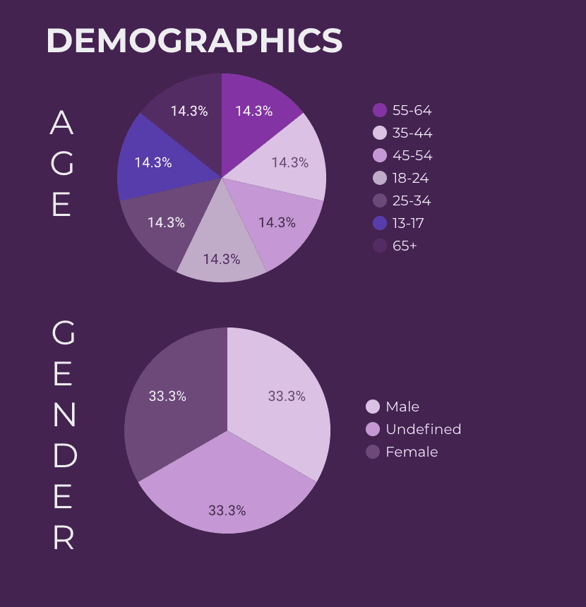 Facebook audience age and gender