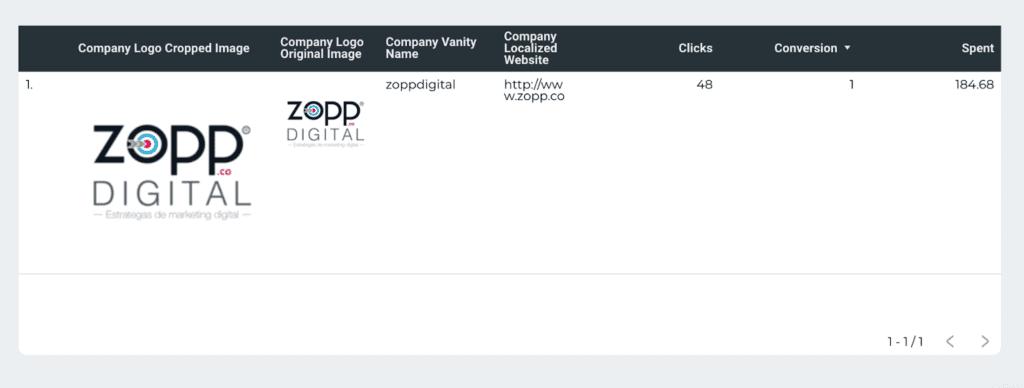 LinkedIn Ads company info report on Google Data Studio
